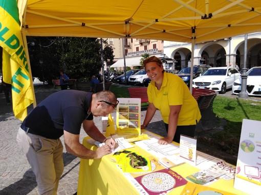 Un successo il mercato di Campagna Amica a Verbania
