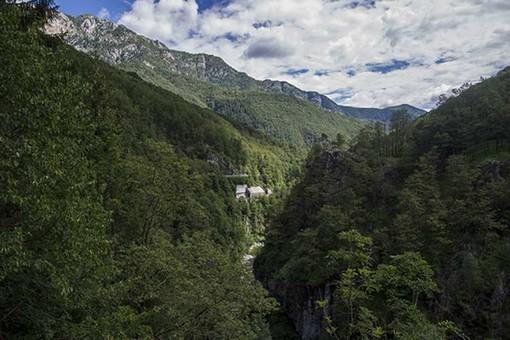 Trasformazione del bosco: la giunta abbassa a 10.000 euro l'importo base per il calcolo della compensazione