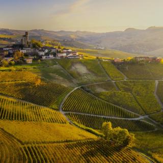 ll Piemonte è pronto a diventare la Capitale mondiale del cibo