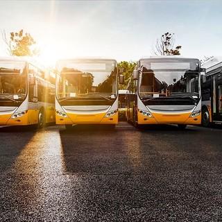 Crollo delle immatricolazioni di autobus: nel Vco zero nuove targhe